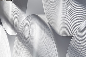 Paper industry hoists